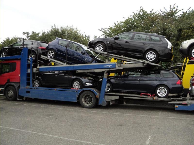 transport aut osobowych 6